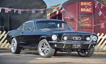 Phenomenal fast Fords under hammer